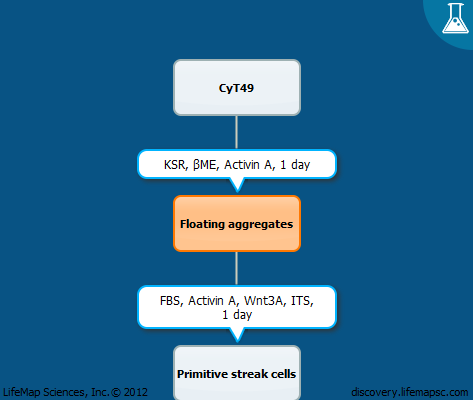 A scalable, suspension protocol for derivation of pancreatic cells from embryonic stem cells