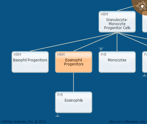 Eosinophil Progenitors