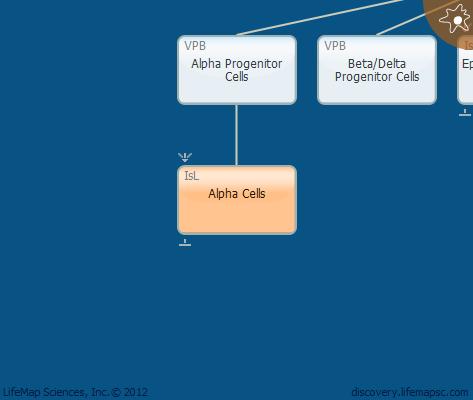 Alpha Cells