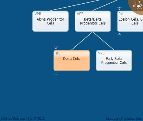 Delta Cells