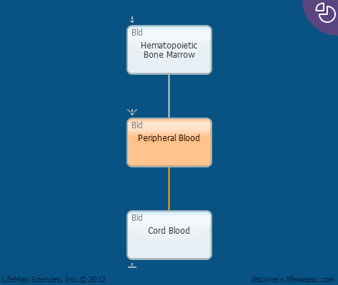 Peripheral Blood
