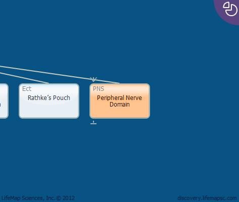 Peripheral Nerve Domain
