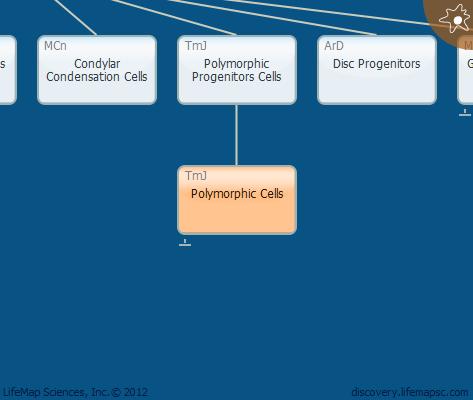 Polymorphic Cells