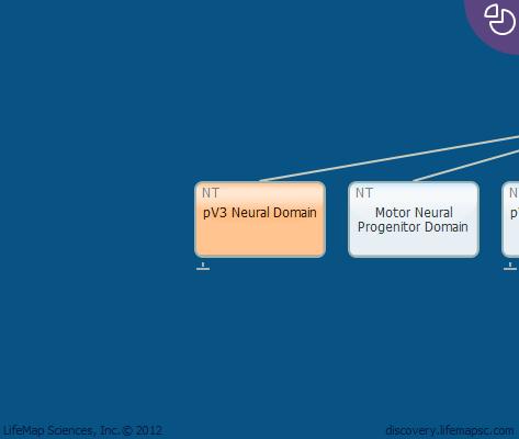 pV3 Neural Domain